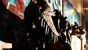 T. rex Fossils 照片