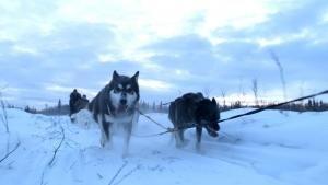 Overcoming the Wild Yukon photo