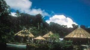 La gallery di Amazzonia: viaggio nella Foresta foto