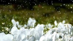 #NGChallenge: Ghiaccio foto