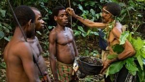 وحش المستنقعات في الكونغو صورة