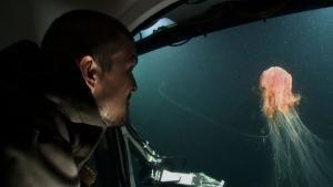 وحش البحر صورة