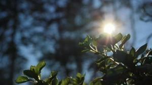 #NGChallenge: Luce foto