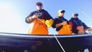 Adventure on Board photo