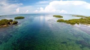 Cuban Paradise photo