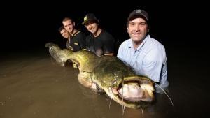 Nightmare Fish photo