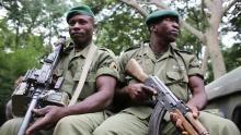 Virunga Unveiled show