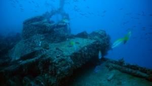 Relics under the Sea photo
