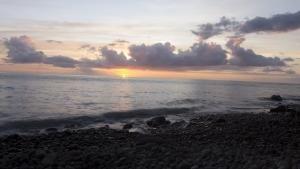 Carribean photo