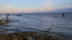 انهيار البيئة المائية صورة