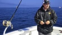 The Thin Bluefin Line show