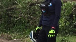 كتيبة الإعصار صورة