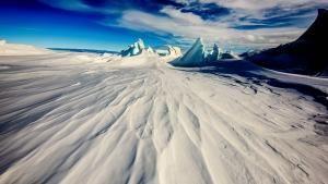 القارة 7: أنتاركتيكا صورة