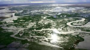 رودخانه هیولاها عکس