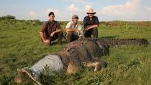 Australian Crocodiles show