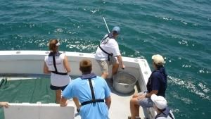 Shark Survivors: USA photo