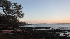 رعب هاواي صورة