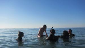 في المياه الضحلة صورة