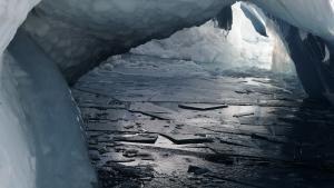 Extream Ice photo