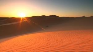أراضي الشرق الأوسط الصحراوية - الحياة البرية في مصر صورة