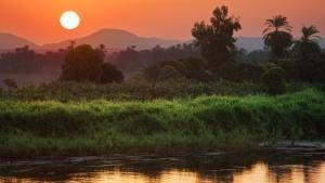 جموح النيل صورة