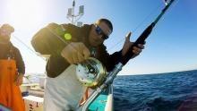 Battle For Tuna show