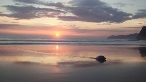 Jaguar Beach Battle photo