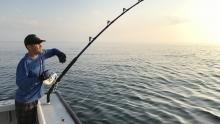 ماهی یا قحطی برنامه