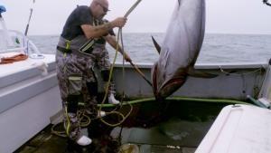 اختلاف نظر در ماهیگیری عکس