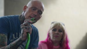 Snakes in the City photo