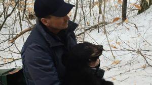 عرين الدبب صورة