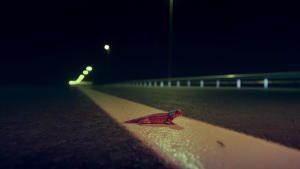Dead By Dawn photo