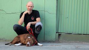 Dog Rehabilitation photo