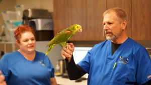 Exotic Animal Vet photo