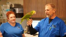 Exotic Animal Vet show
