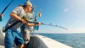 صيد كبير صورة