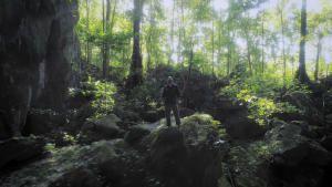 هروب أسير عبر الغابة صورة