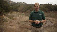 California Mudslide show