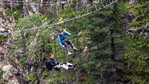 آليكس هونولد في جبال الألب السويسري صورة