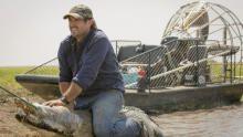 كارثة التمساح برنامج