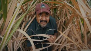 Jungle Heroes photo