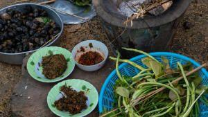 غوردن رامزي: أسرار الطعام البيرو: نهرميكونغ العظيم في لاوس صورة