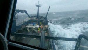 Super Typhoon Terror photo