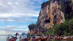 تايلاند البرية صورة