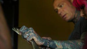 Snakes in the City - Season 7 photo