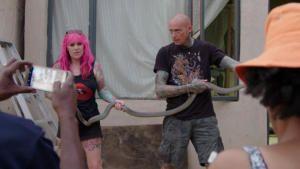 The Snake Pit photo
