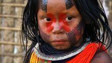 Wild Amazon show