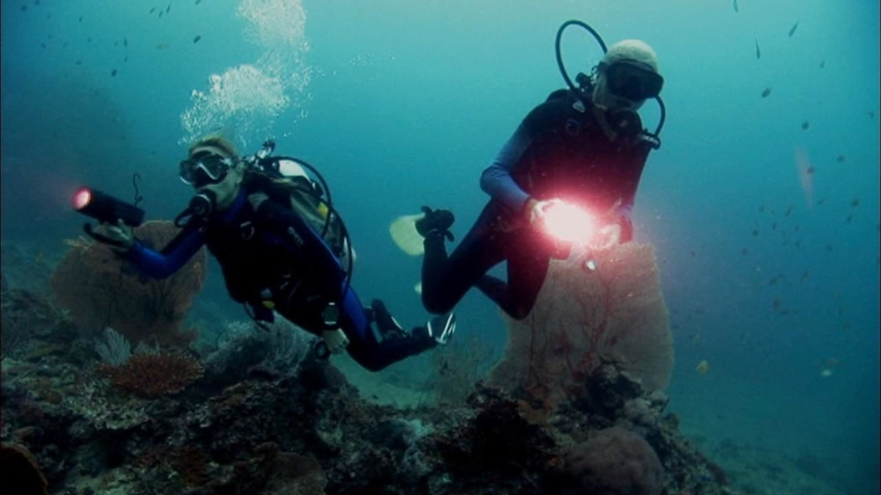 https://assets-natgeotv.fnghub.com/Shows/14524.jpg