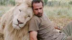 W rezerwacie lwów