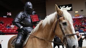 Knights Of Mayhem